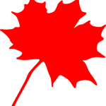 maple-leaf-md